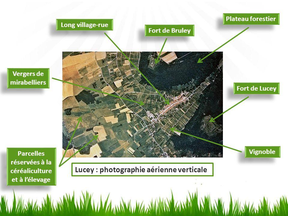 Lucey : photographie aérienne verticale
