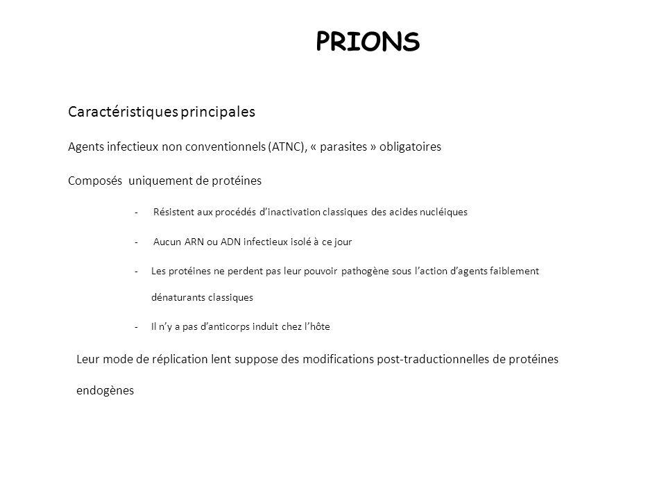 PRIONS Caractéristiques principales