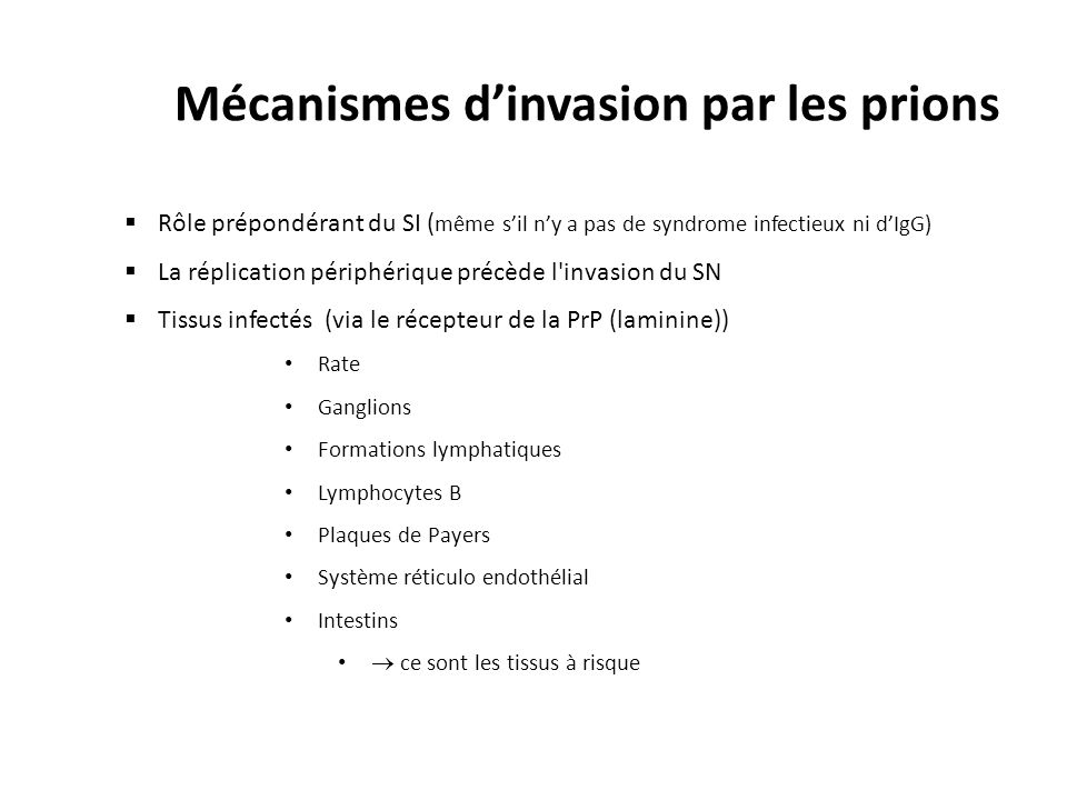 Mécanismes d'invasion par les prions
