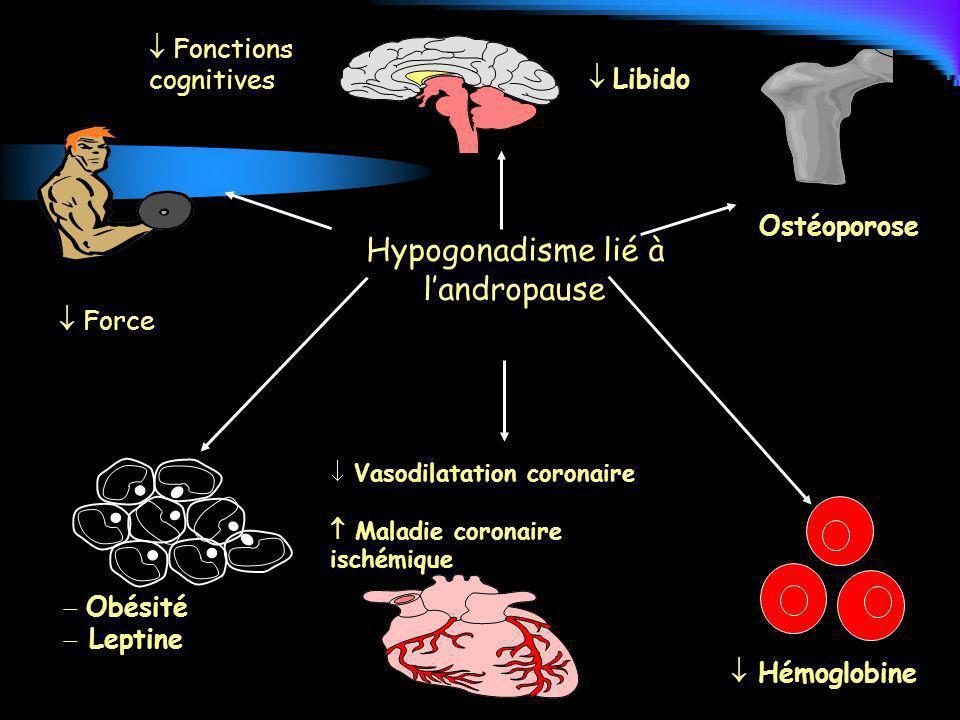 Hypogonadisme lié à l'andropause