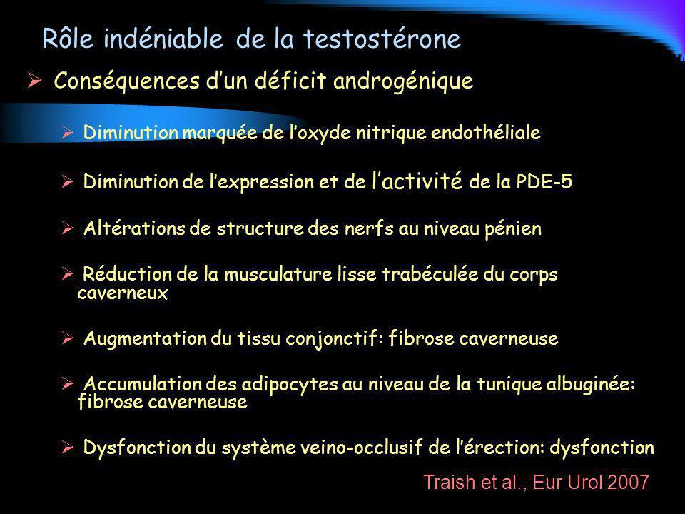 Rôle indéniable de la testostérone