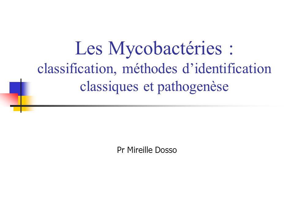 Les Mycobactéries : classification, méthodes d'identification classiques et pathogenèse