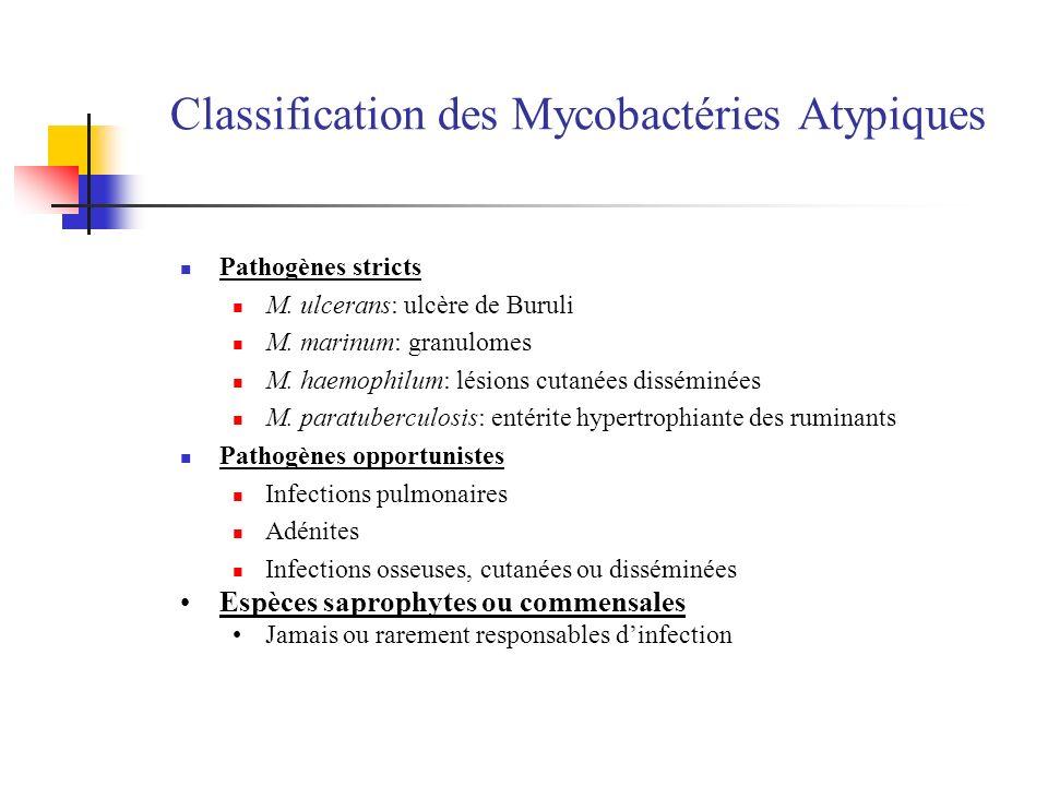 Classification des Mycobactéries Atypiques