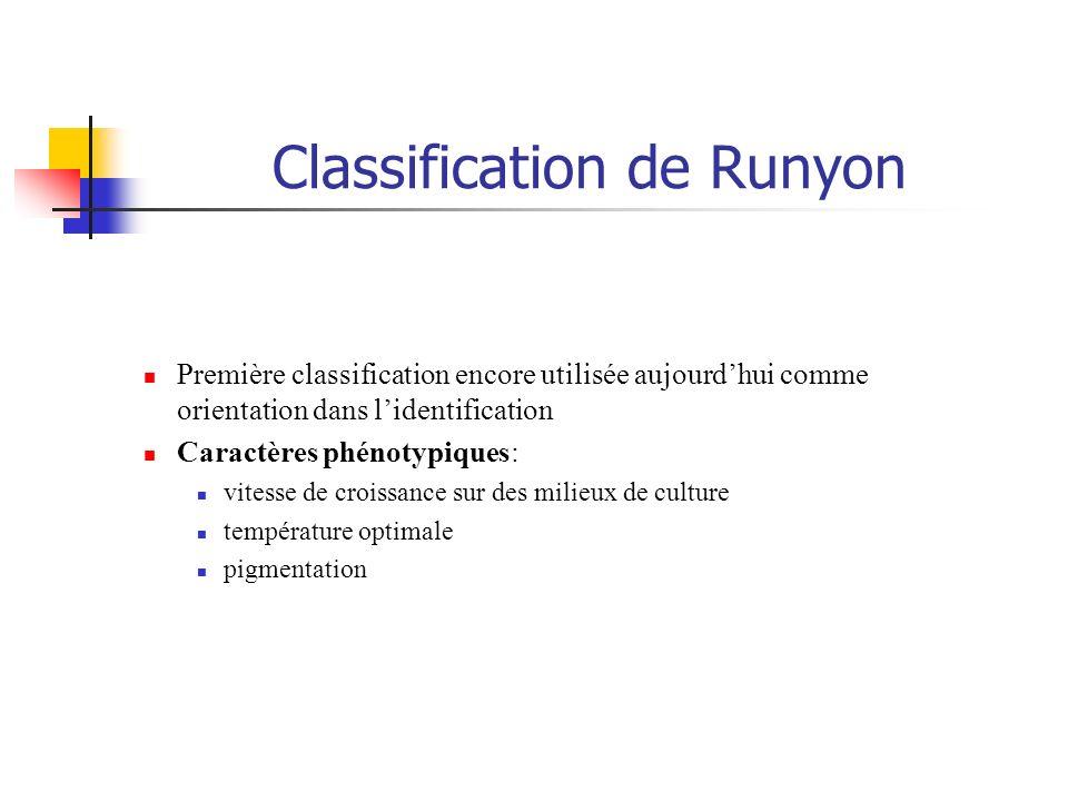 Classification de Runyon