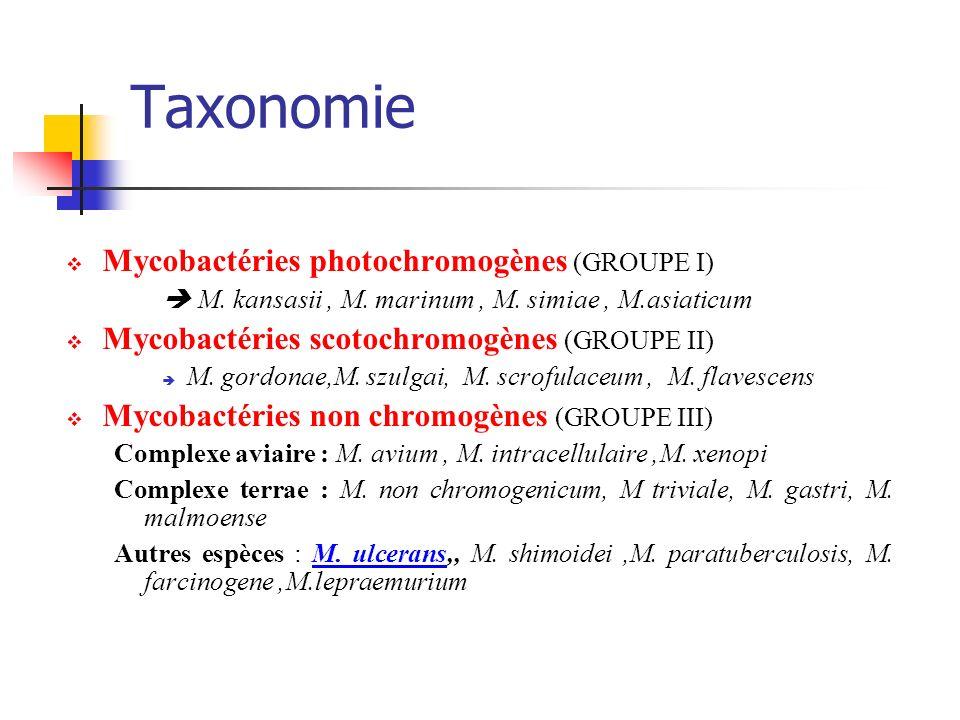 Taxonomie Mycobactéries photochromogènes (GROUPE I)