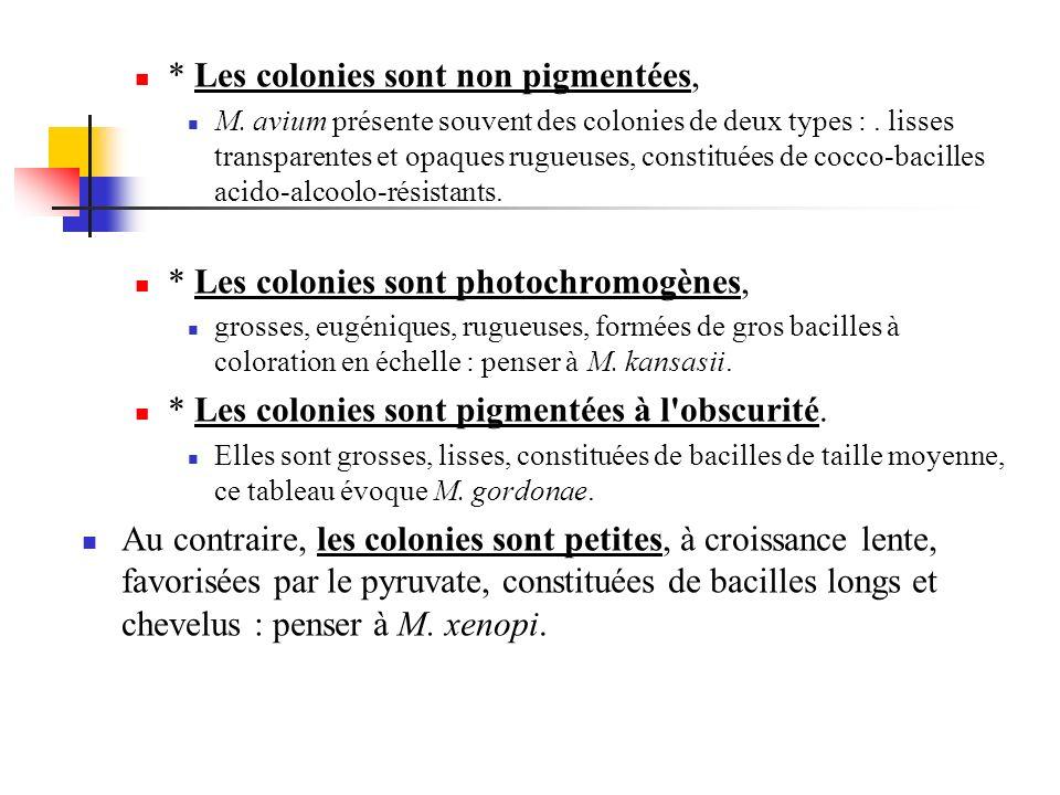 * Les colonies sont non pigmentées,