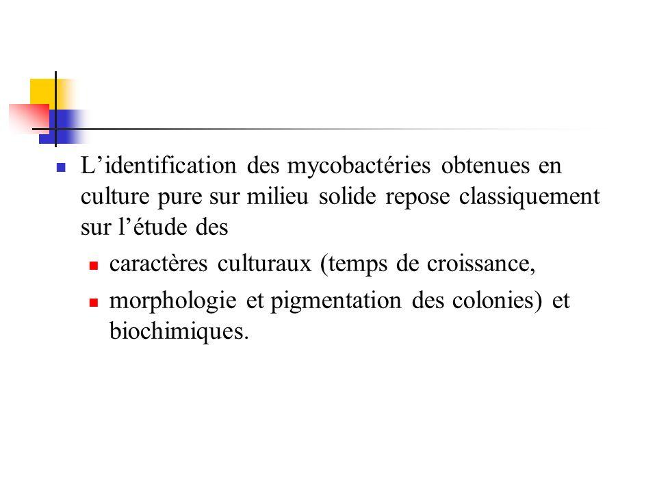 L'identification des mycobactéries obtenues en culture pure sur milieu solide repose classiquement sur l'étude des