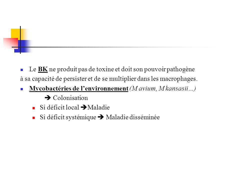 Le BK ne produit pas de toxine et doit son pouvoir pathogène