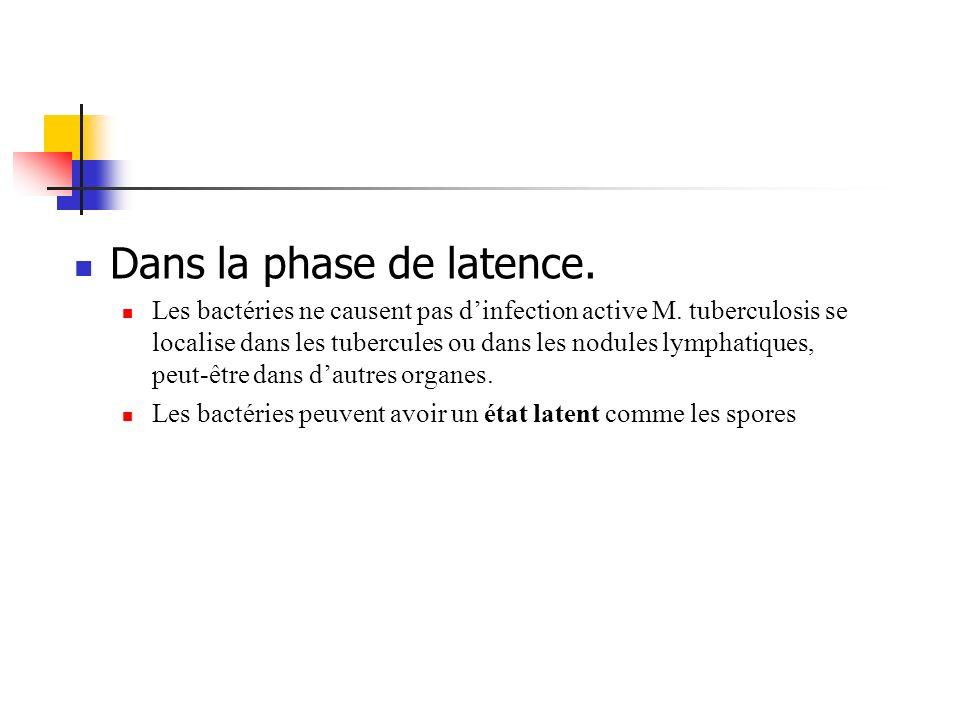 Dans la phase de latence.
