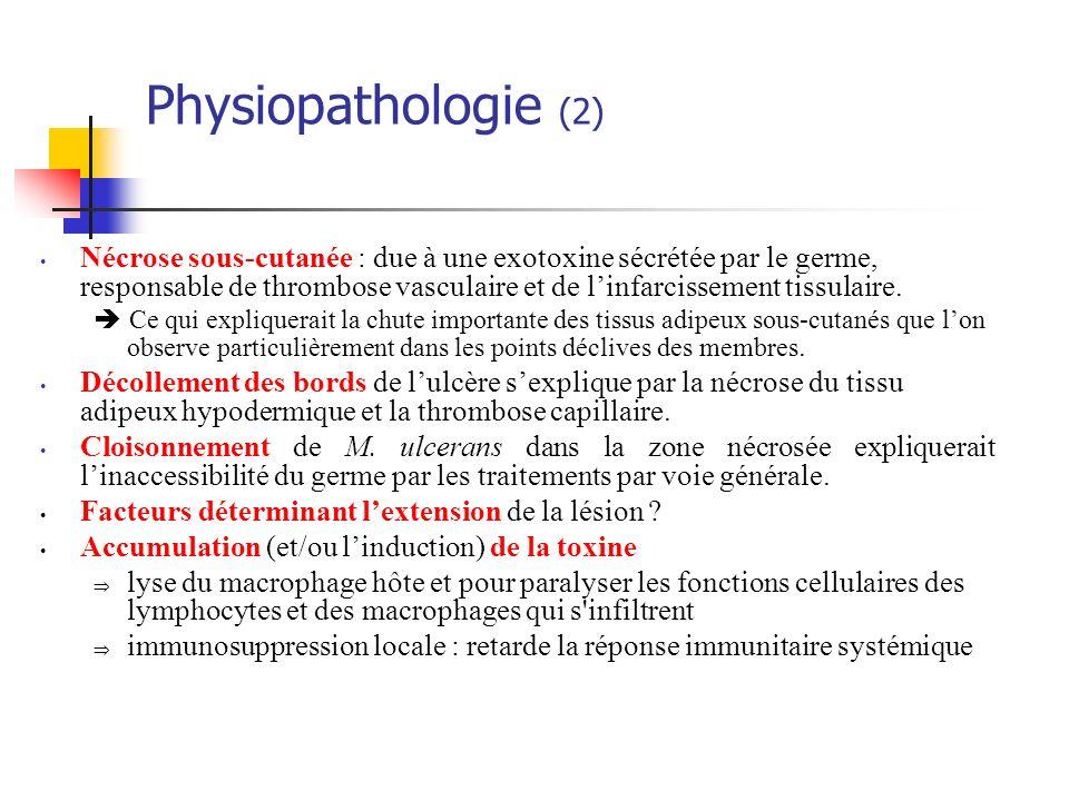 Physiopathologie (2)