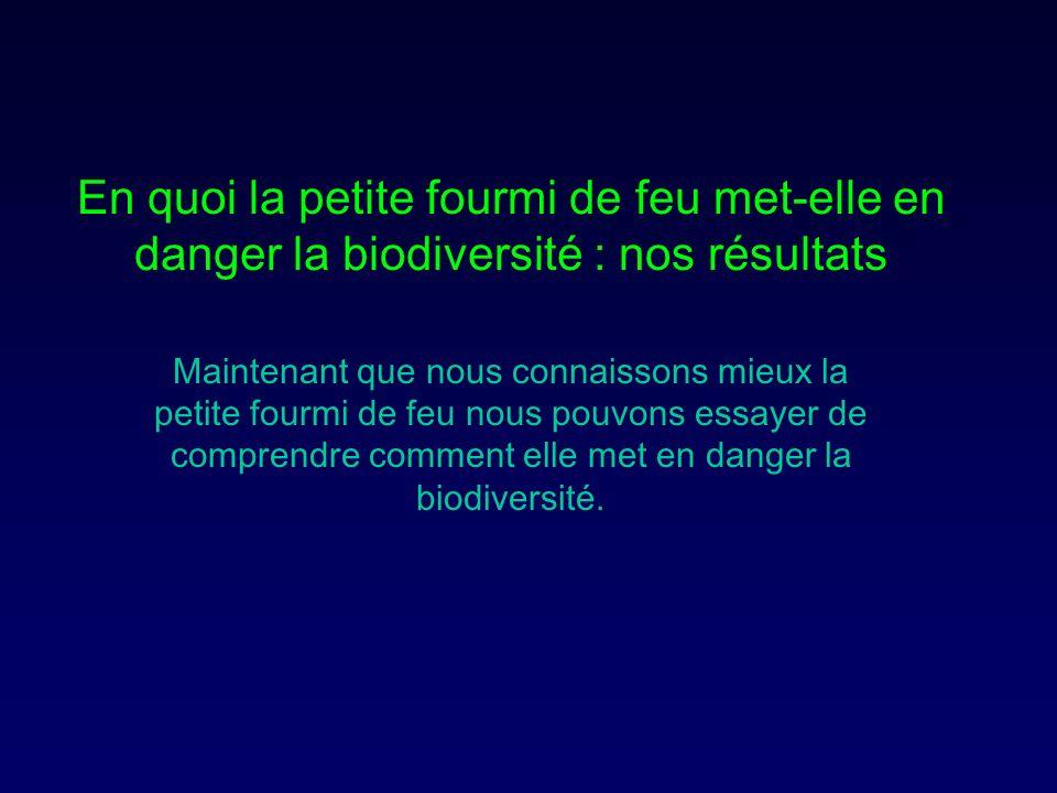 En quoi la petite fourmi de feu met-elle en danger la biodiversité : nos résultats