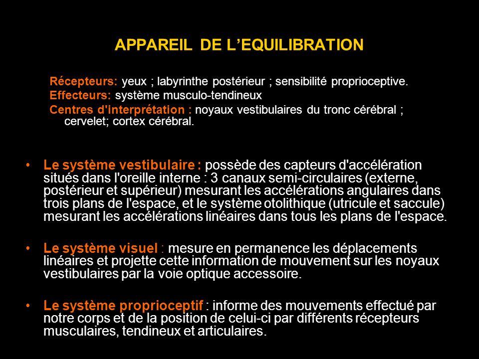 APPAREIL DE L'EQUILIBRATION