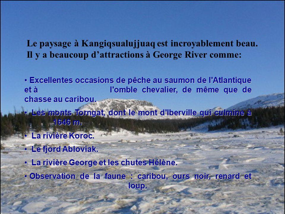 Le paysage à Kangiqsualujjuaq est incroyablement beau