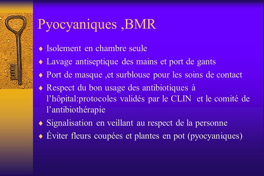 Pyocyaniques ,BMR Isolement en chambre seule