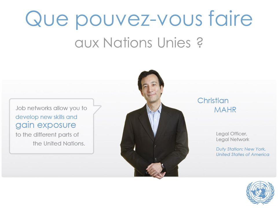 Que pouvez-vous faire aux Nations Unies Note du traducteur