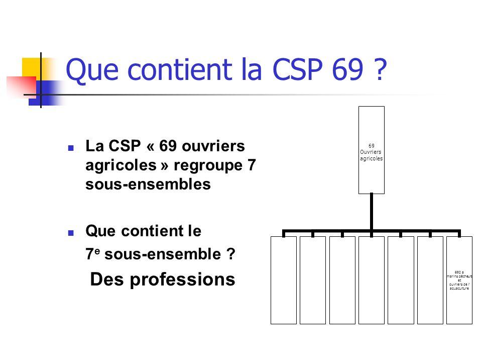 Que contient la CSP 69 La CSP « 69 ouvriers agricoles » regroupe 7 sous-ensembles. Que contient le.