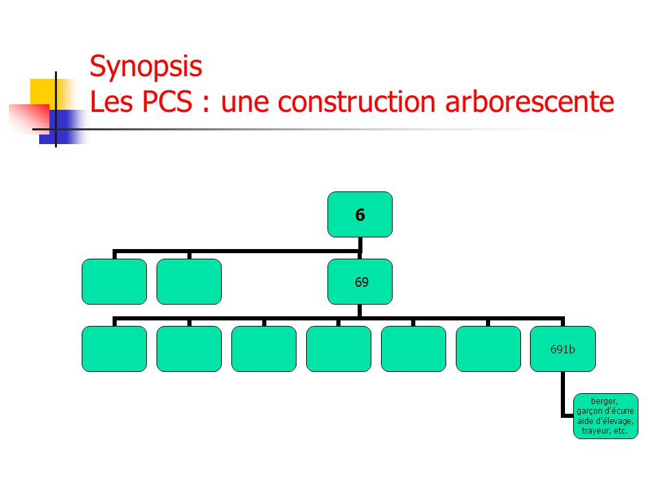 Synopsis Les PCS : une construction arborescente