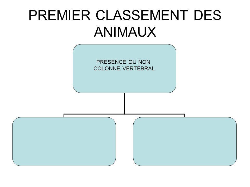 PREMIER CLASSEMENT DES ANIMAUX