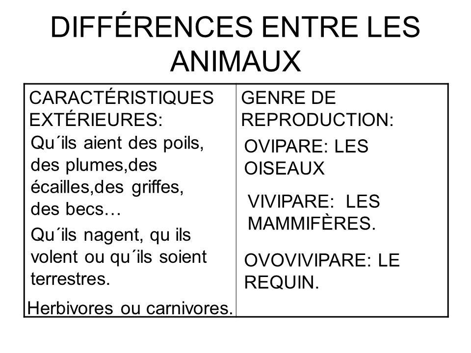 DIFFÉRENCES ENTRE LES ANIMAUX