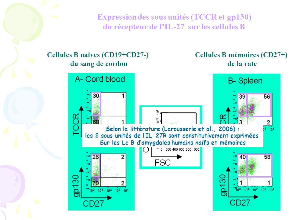 Expression des sous unités (TCCR et gp130)