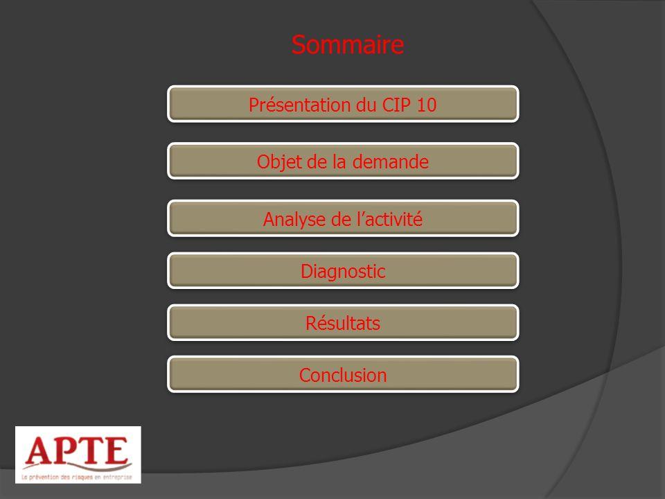 Sommaire Présentation du CIP 10 Objet de la demande
