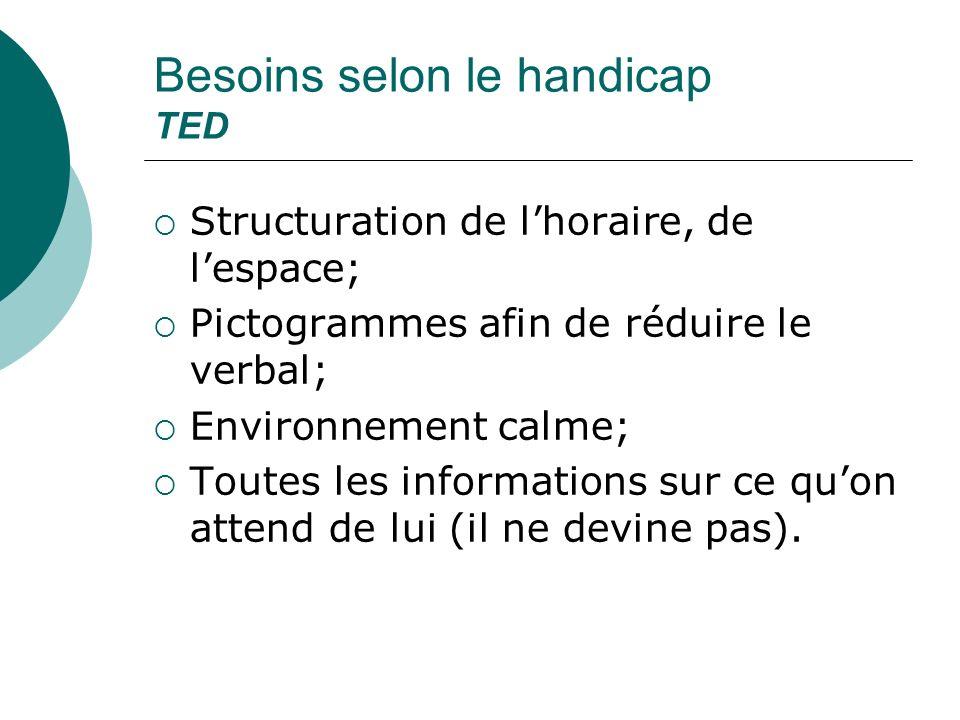 Besoins selon le handicap TED