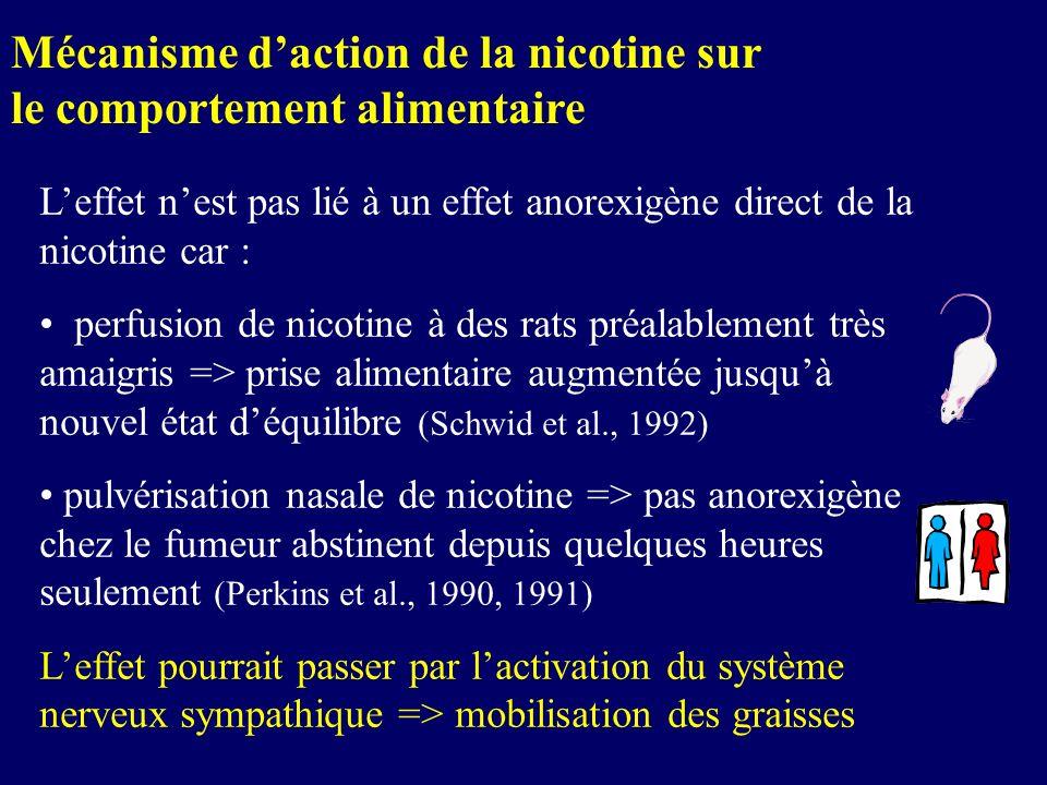Mécanisme d'action de la nicotine sur le comportement alimentaire