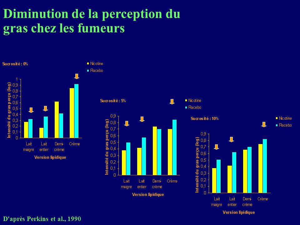 Diminution de la perception du gras chez les fumeurs