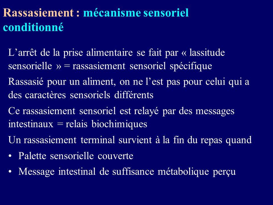 Rassasiement : mécanisme sensoriel conditionné