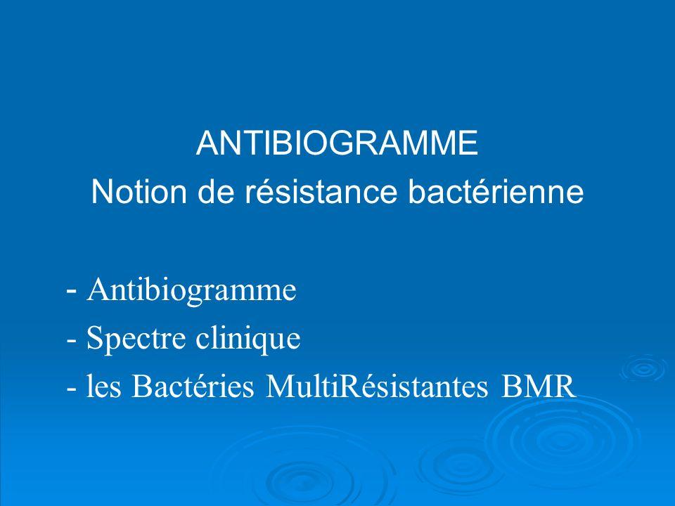 Notion de résistance bactérienne