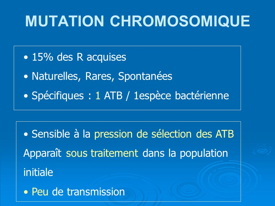MUTATION CHROMOSOMIQUE