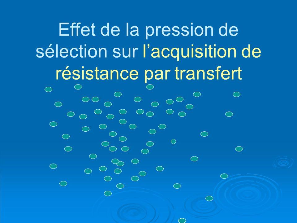 Effet de la pression de sélection sur l'acquisition de résistance par transfert