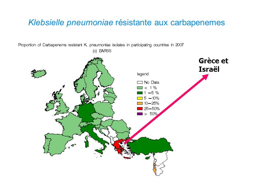 Klebsielle pneumoniae résistante aux carbapenemes