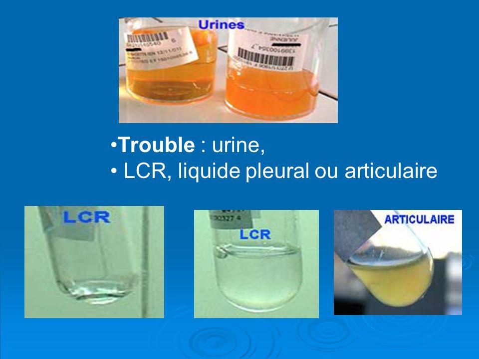 Trouble : urine, LCR, liquide pleural ou articulaire