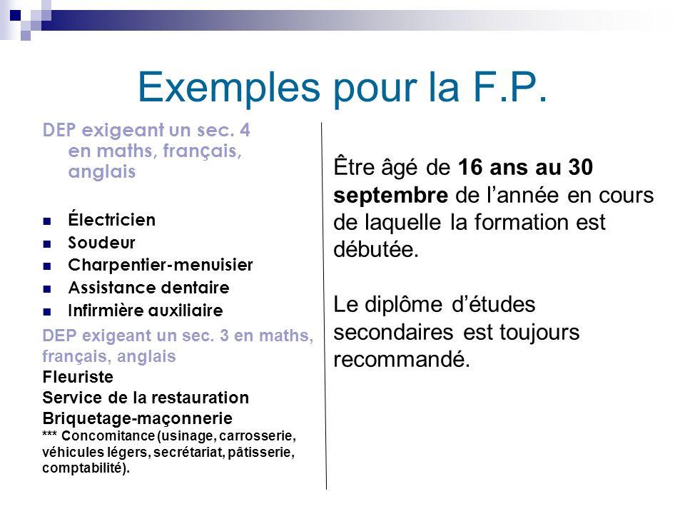 Exemples pour la F.P. DEP exigeant un sec. 4 en maths, français, anglais. Électricien. Soudeur. Charpentier-menuisier.