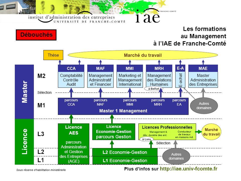 Les formations au Management à l'IAE de Franche-Comté Débouchés