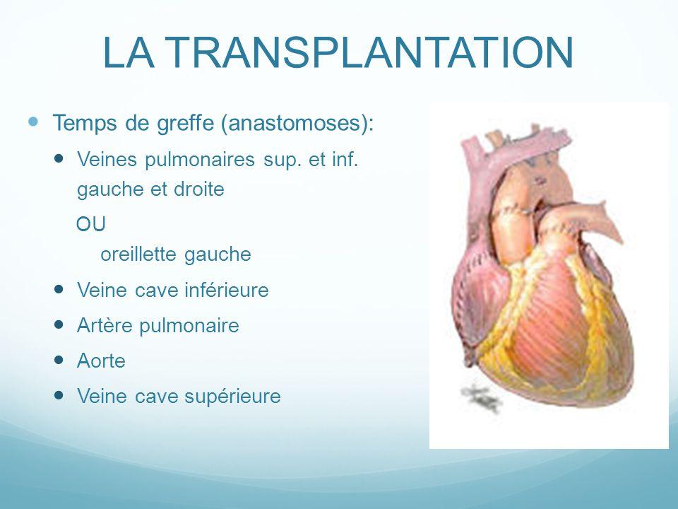 LA TRANSPLANTATION Temps de greffe (anastomoses):