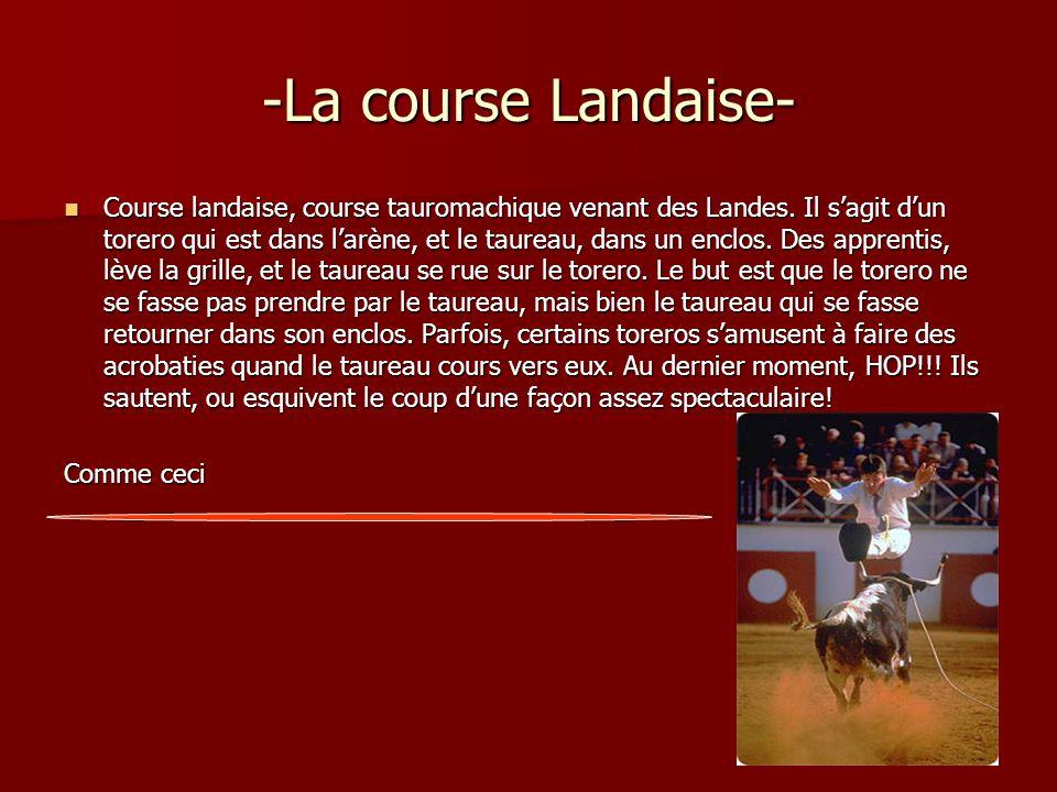 -La course Landaise-