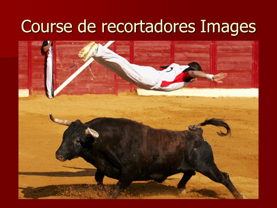 Course de recortadores Images