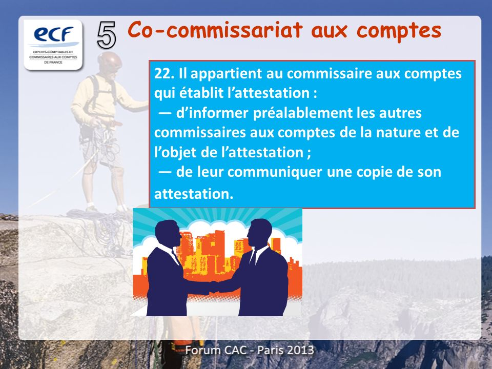 Co-commissariat aux comptes