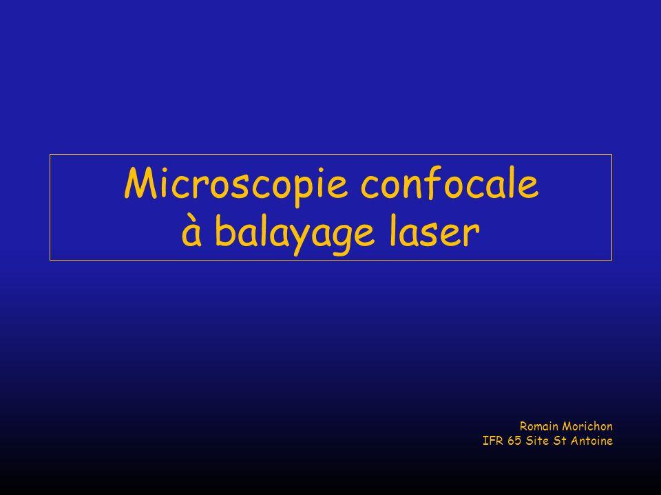 Microscopie confocale à balayage laser