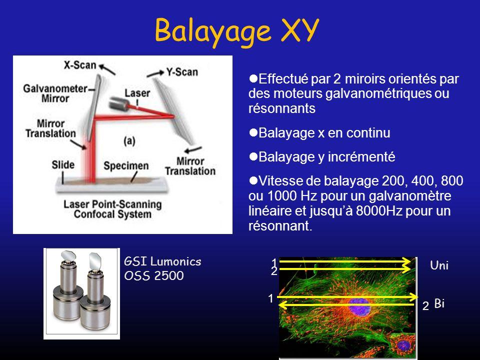 Balayage XY Effectué par 2 miroirs orientés par des moteurs galvanométriques ou résonnants. Balayage x en continu.
