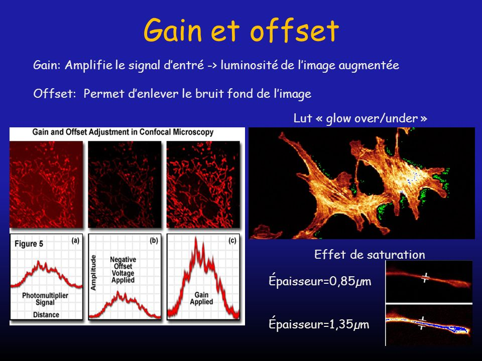 Gain et offset Gain: Amplifie le signal d'entré -> luminosité de l'image augmentée. Offset: Permet d'enlever le bruit fond de l'image.