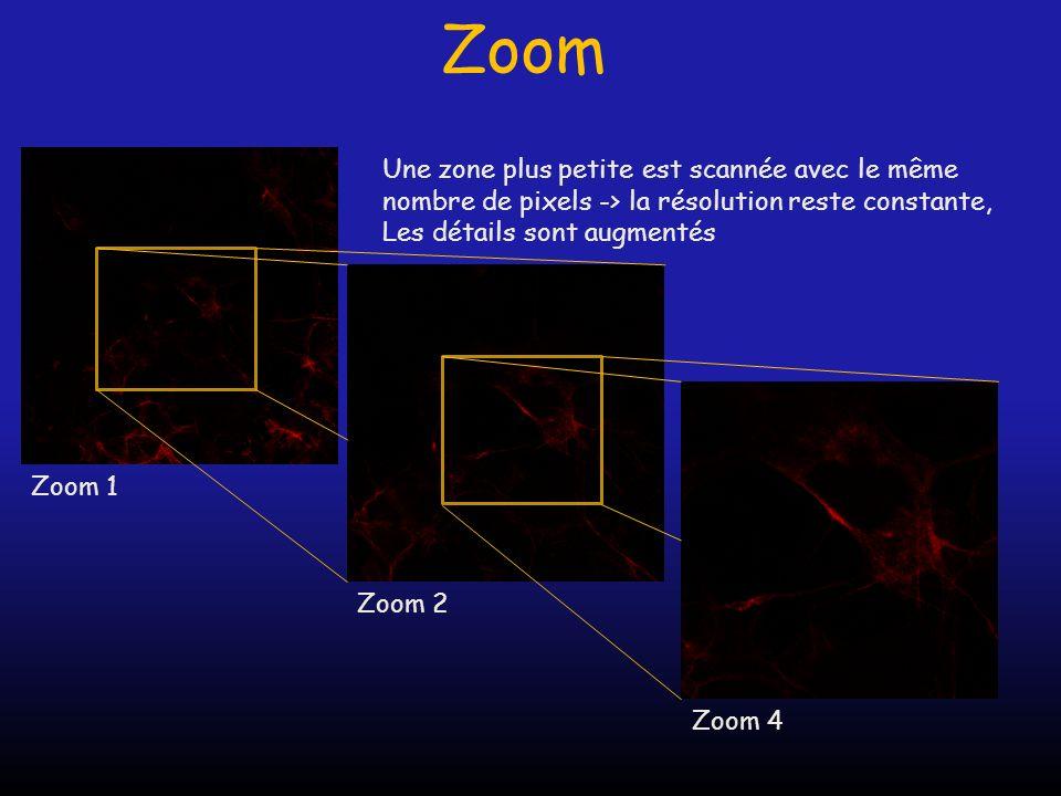 Zoom Une zone plus petite est scannée avec le même nombre de pixels -> la résolution reste constante,