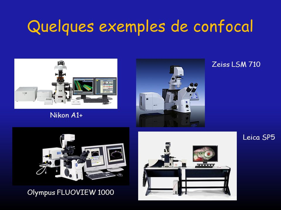 Quelques exemples de confocal