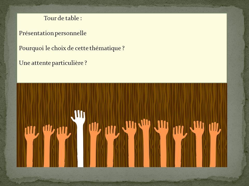 Tour de table : Présentation personnelle. Pourquoi le choix de cette thématique .