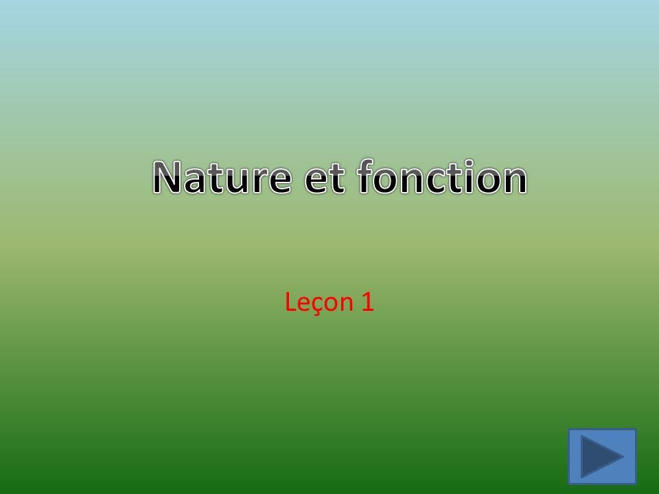 Nature et fonction Leçon 1