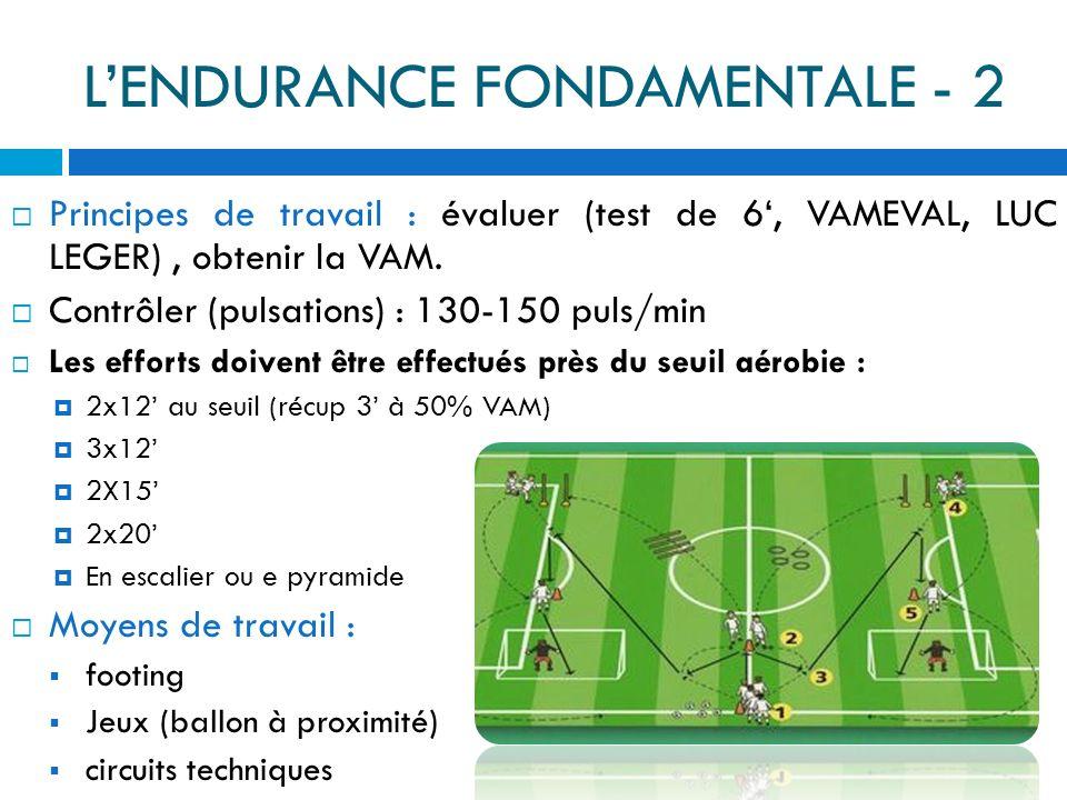 L'ENDURANCE FONDAMENTALE - 2