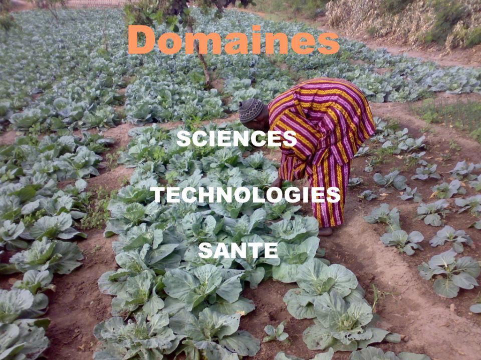 Domaines SCIENCES TECHNOLOGIES SANTE