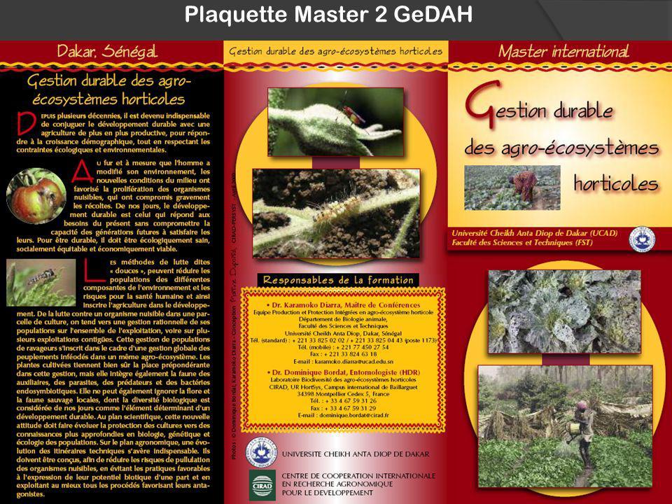 Plaquette Master 2 GeDAH